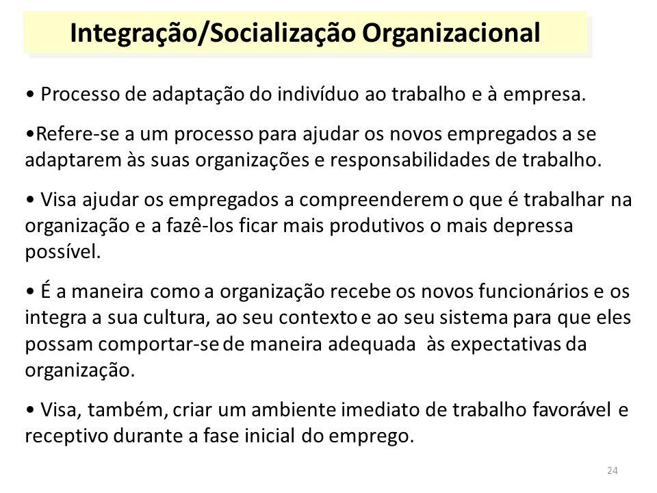 Integração/Socialização Organizacional
