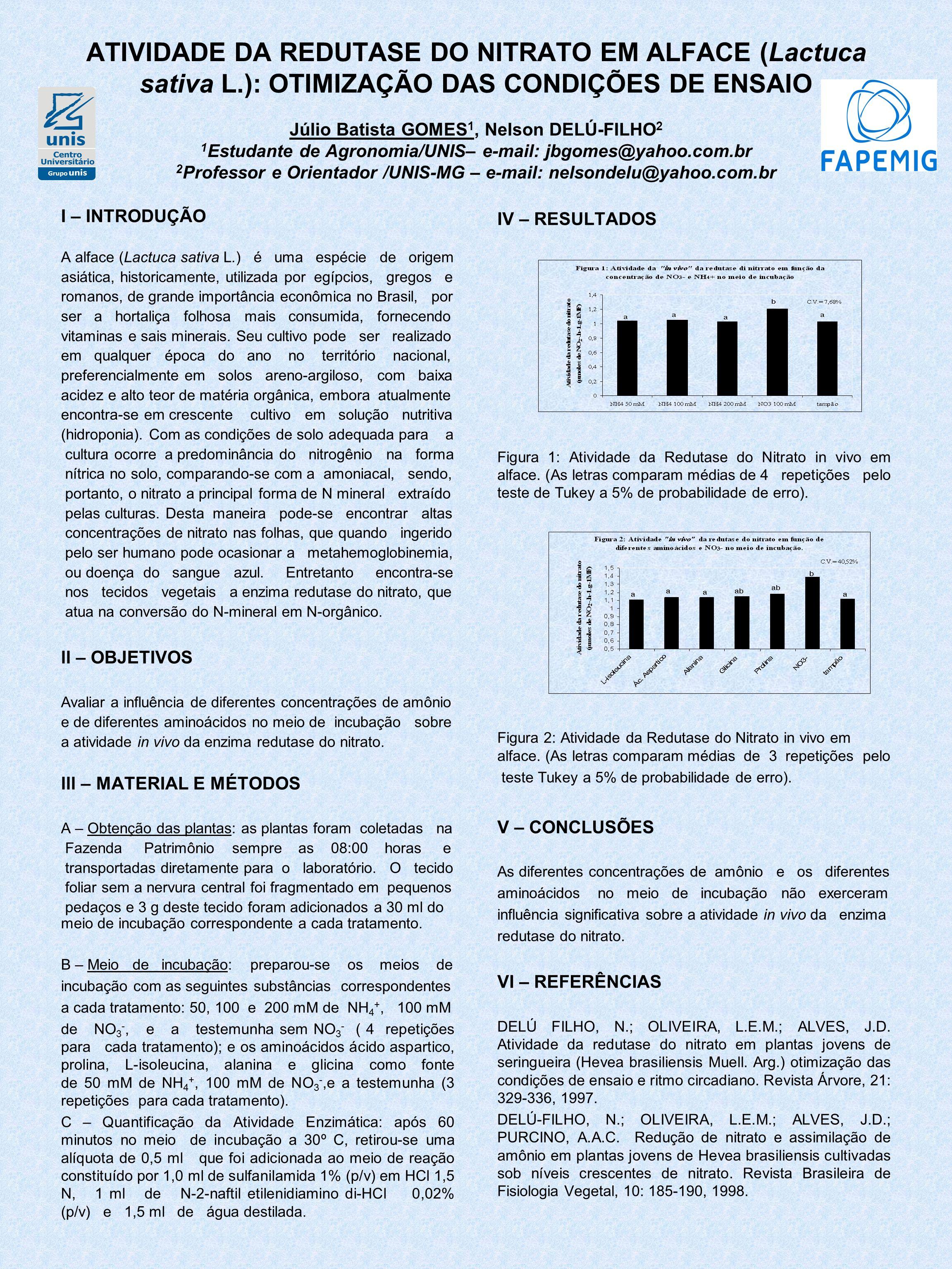 ATIVIDADE DA REDUTASE DO NITRATO EM ALFACE (Lactuca sativa L