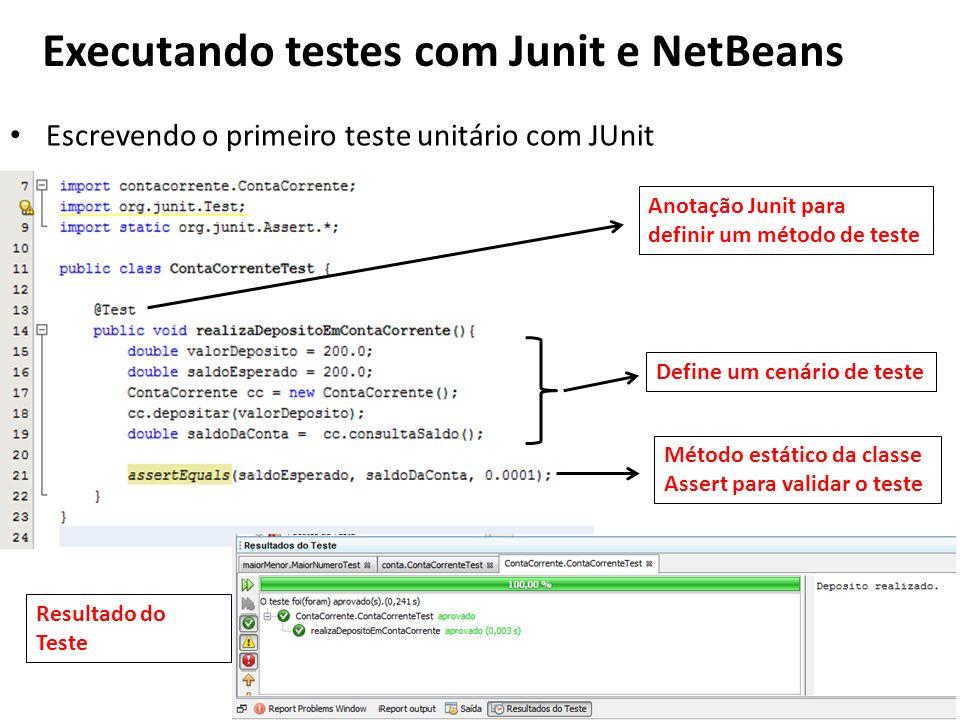 Executando testes com Junit e NetBeans