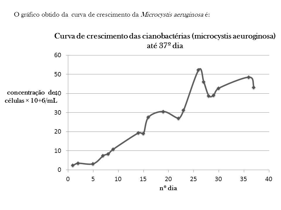 O gráfico obtido da curva de crescimento da Microcystis aeruginosa é: