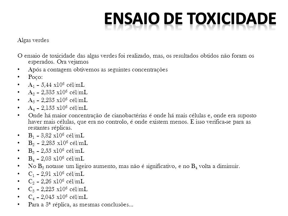 ENSAIO DE TOXICIDADE Algas verdes
