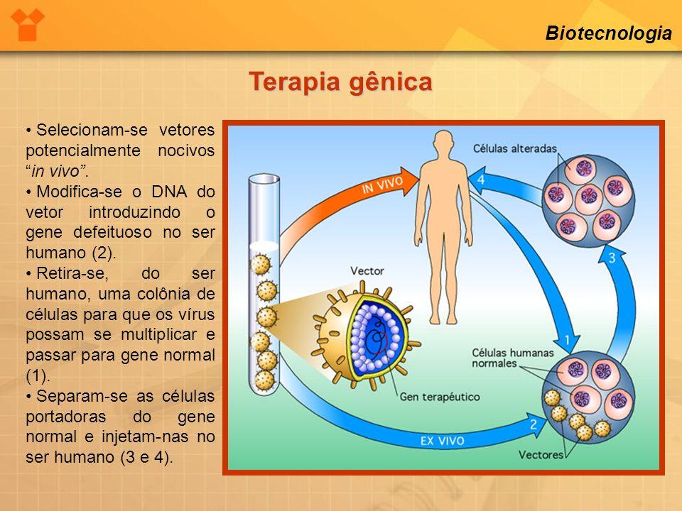 Terapia gênica Biotecnologia
