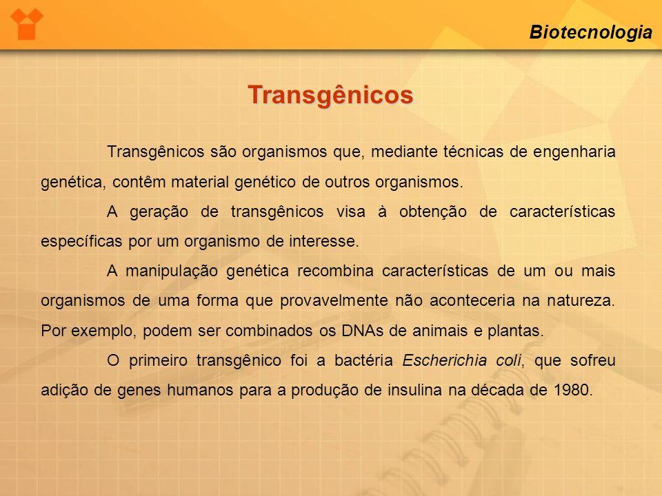 Transgênicos Biotecnologia