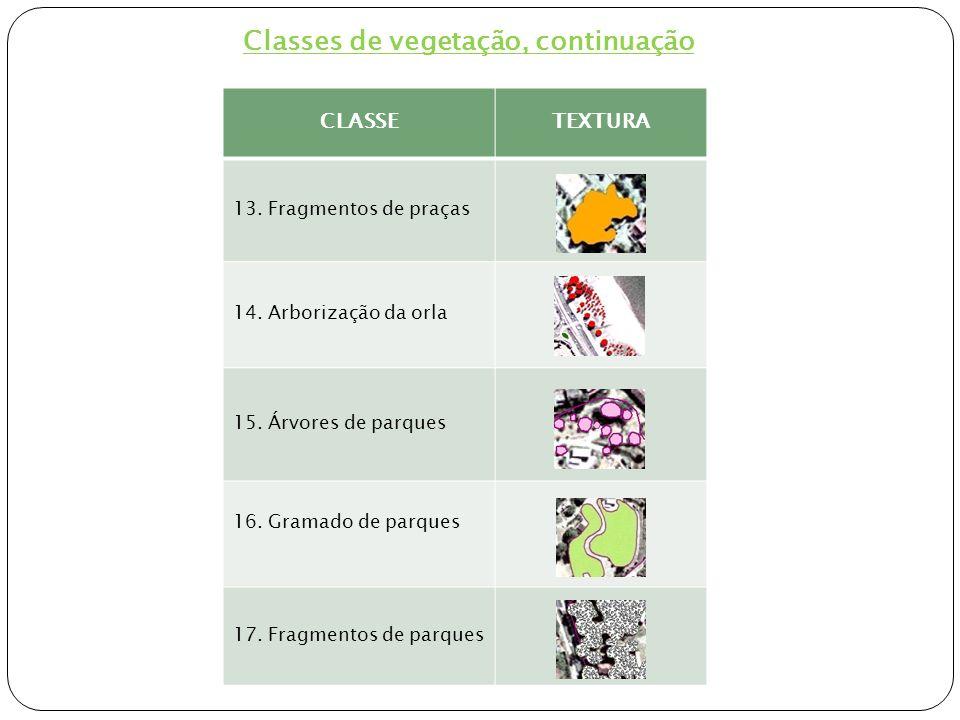 Classes de vegetação, continuação
