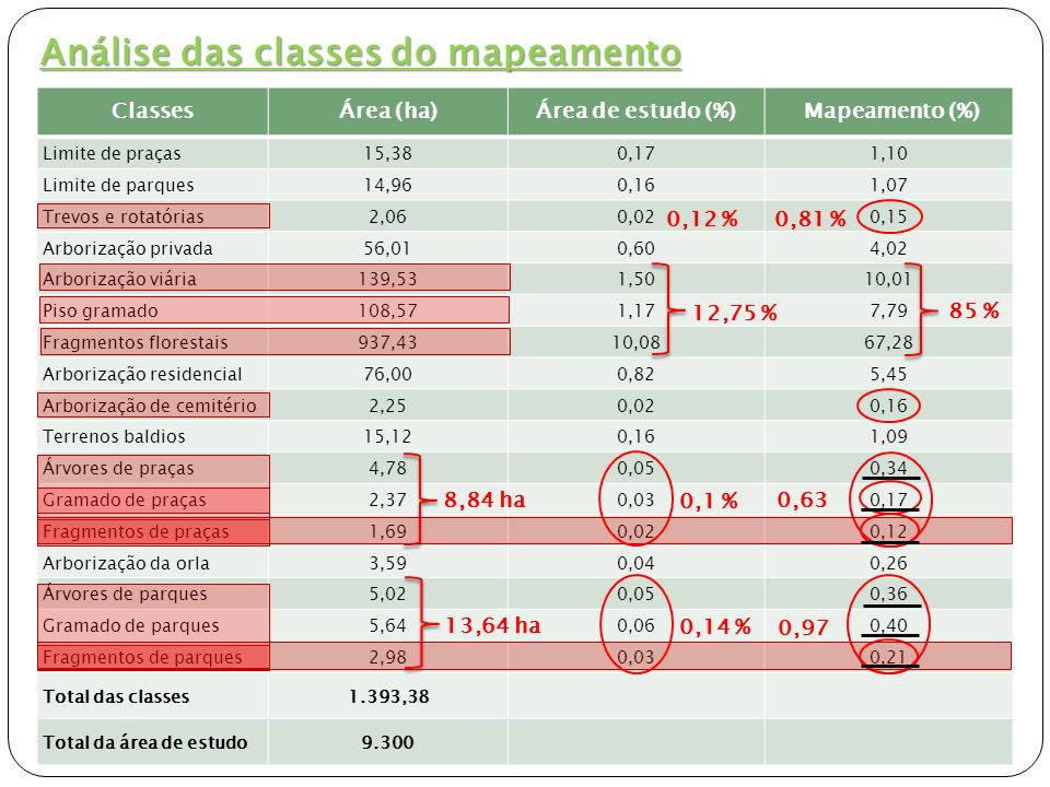 Análise das classes do mapeamento