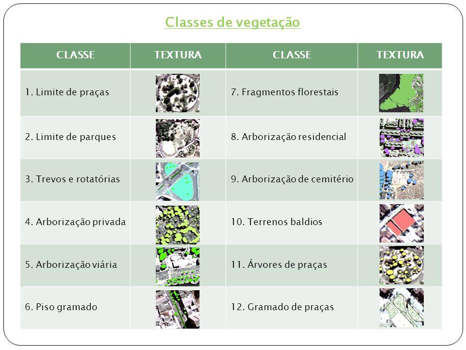 Classes de vegetação CLASSE TEXTURA 1. Limite de praças
