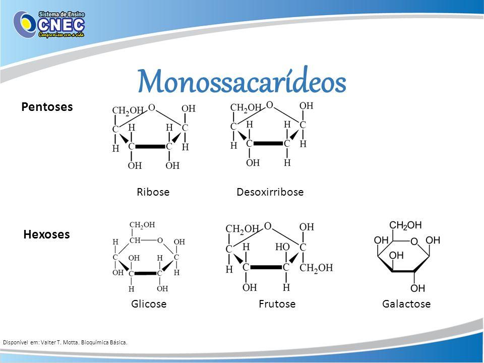 Monossacarídeos Pentoses Hexoses Ribose Desoxirribose Glicose Frutose