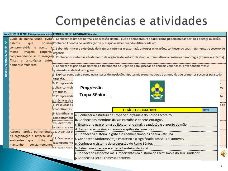Competências e atividades