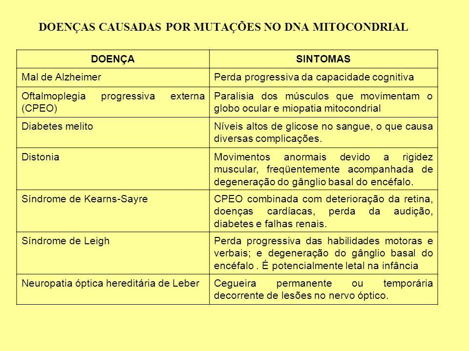 DOENÇAS CAUSADAS POR MUTAÇÕES NO DNA MITOCONDRIAL