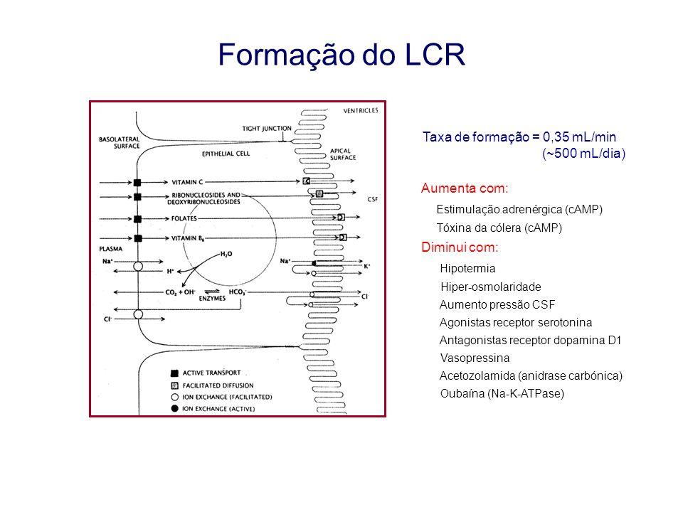 Formação do LCR Taxa de formação = 0,35 mL/min (~500 mL/dia)