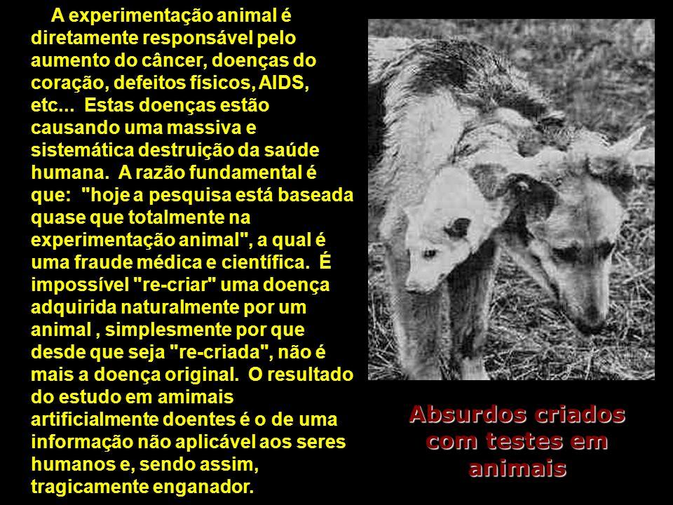 Absurdos criados com testes em animais