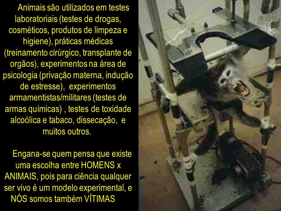Animais são utilizados em testes laboratoriais (testes de drogas, cosméticos, produtos de limpeza e higiene), práticas médicas (treinamento cirúrgico, transplante de orgãos), experimentos na área de psicologia (privação materna, indução de estresse), experimentos armamentistas/militares (testes de armas químicas) , testes de toxidade alcoólica e tabaco, dissecação, e muitos outros. Engana-se quem pensa que existe uma escolha entre HOMENS x ANIMAIS, pois para ciência qualquer ser vivo é um modelo experimental, e NÓS somos também VÍTIMAS !