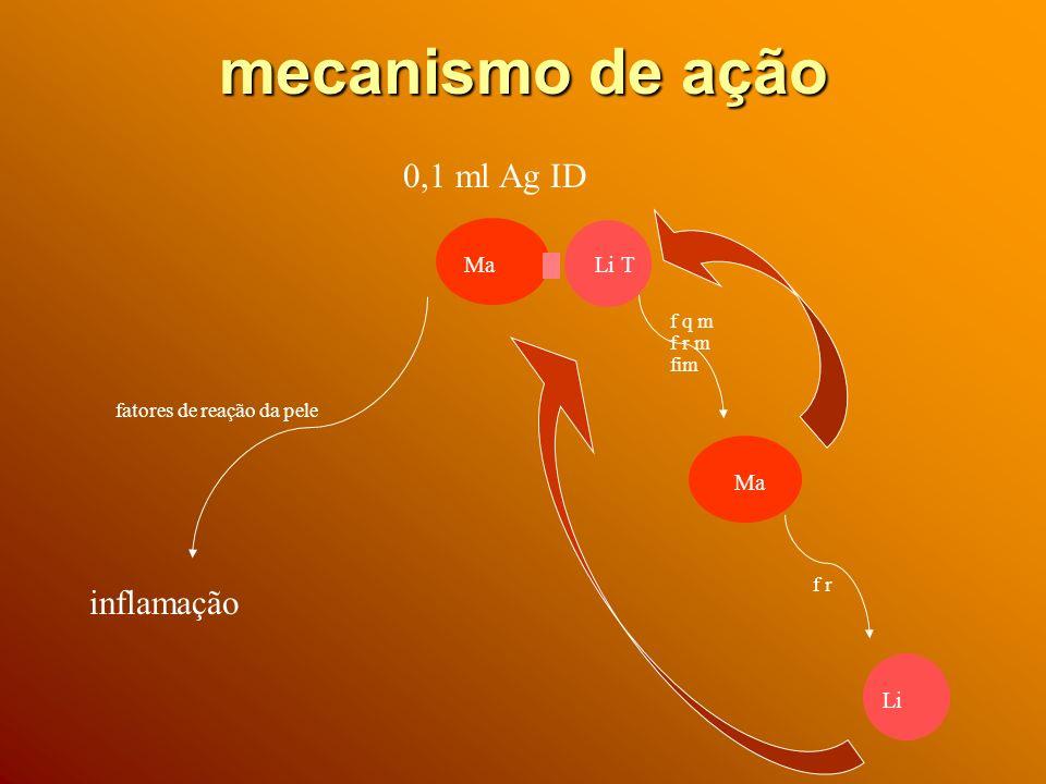 mecanismo de ação 0,1 ml Ag ID inflamação Ma Li T Ma Li f q m f r m