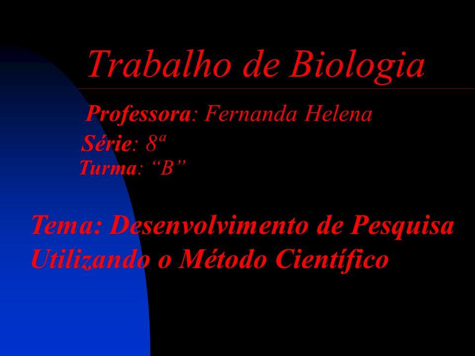 Professora: Fernanda Helena