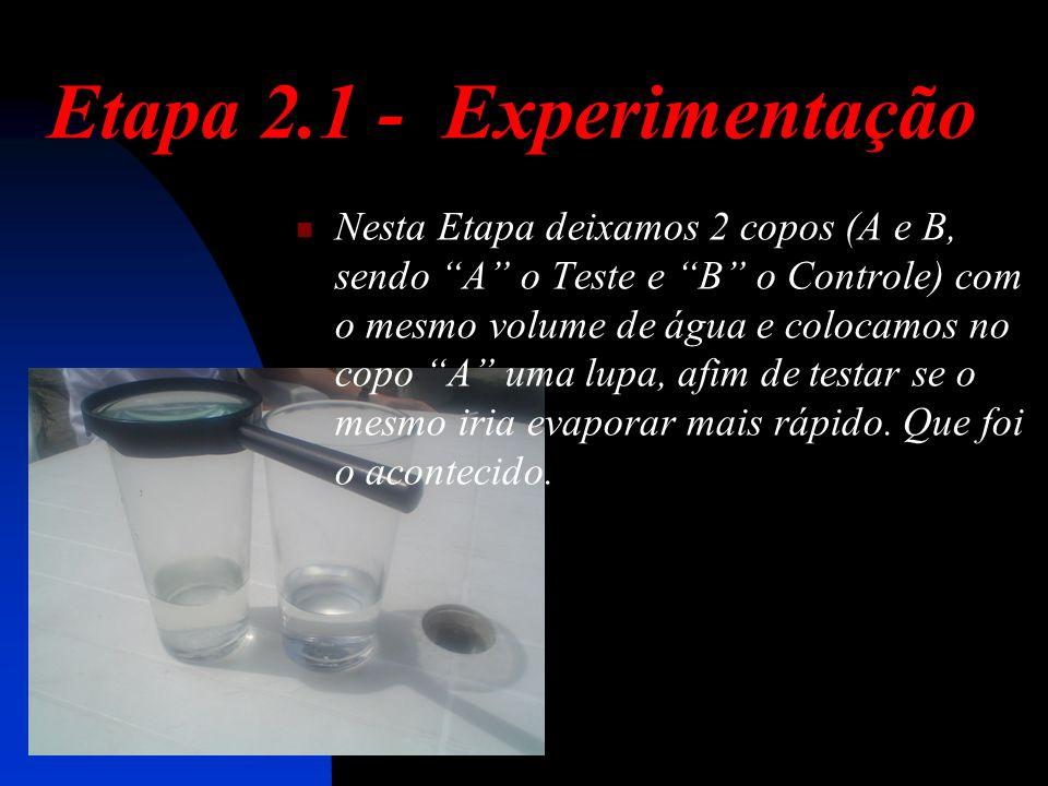 Etapa 2.1 - Experimentação