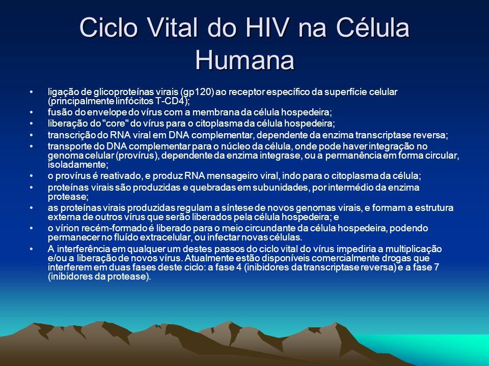 Ciclo Vital do HIV na Célula Humana