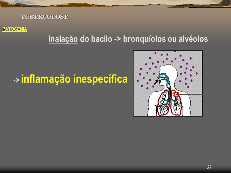 -> inflamação inespecífica