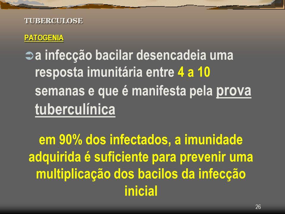 Tuberculose TUBERCULOSE. PATOGENIA.