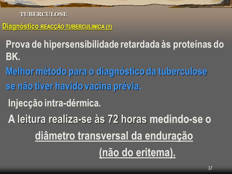 diâmetro transversal da enduração