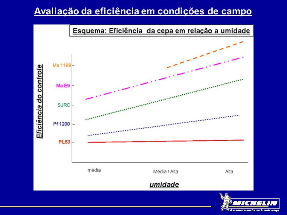 Avaliação da eficiência em condições de campo