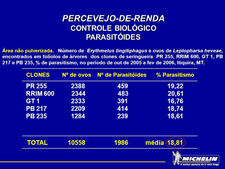 PERCEVEJO-DE-RENDA CONTROLE BIOLÓGICO PARASITÓIDES
