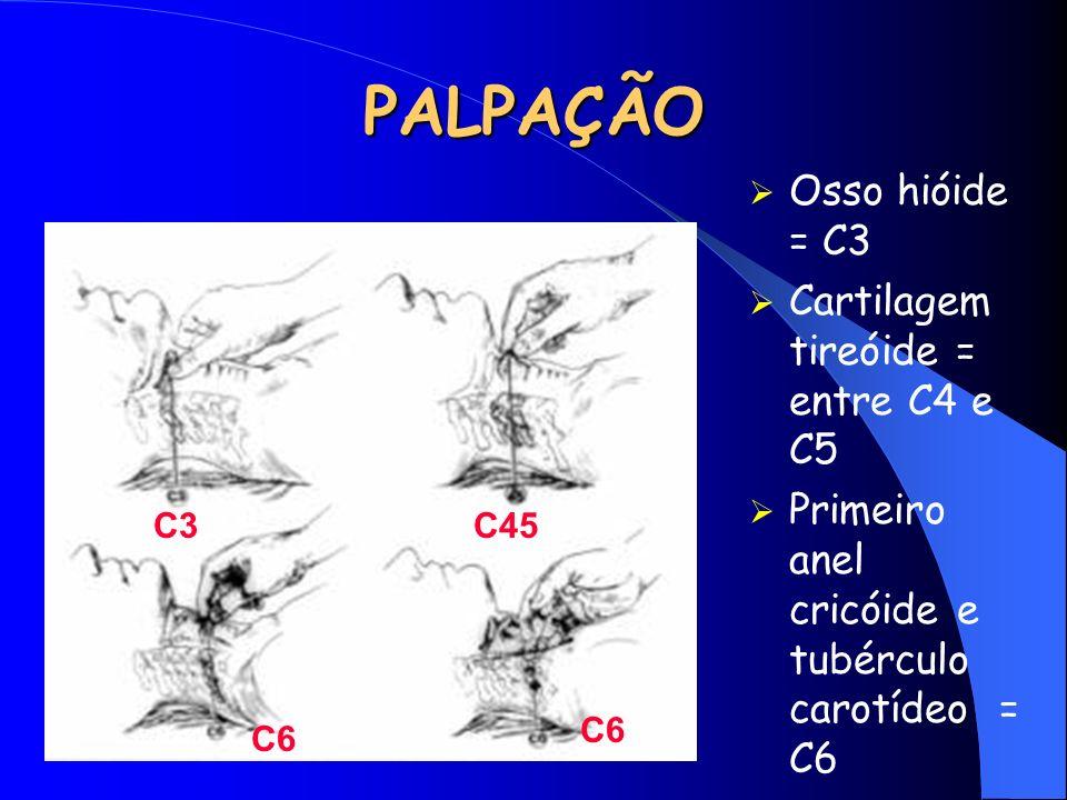 PALPAÇÃO Osso hióide = C3 Cartilagem tireóide = entre C4 e C5