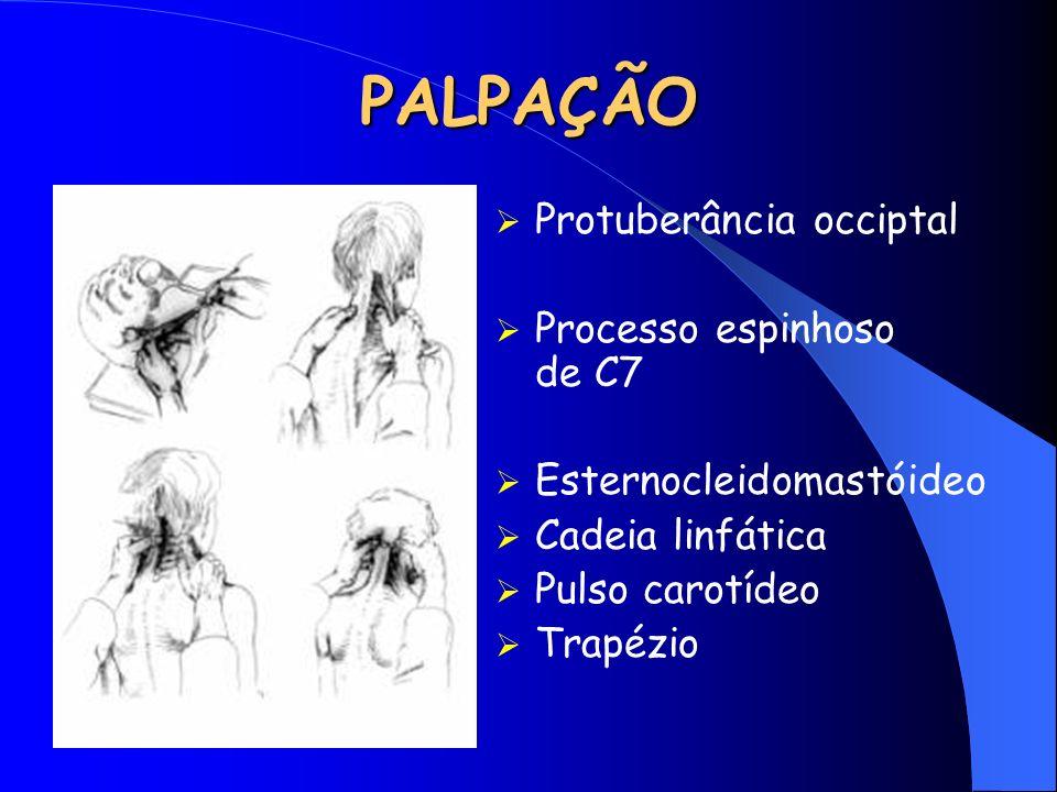 PALPAÇÃO Protuberância occiptal Processo espinhoso de C7