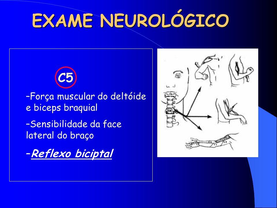 EXAME NEUROLÓGICO C5 Reflexo biciptal