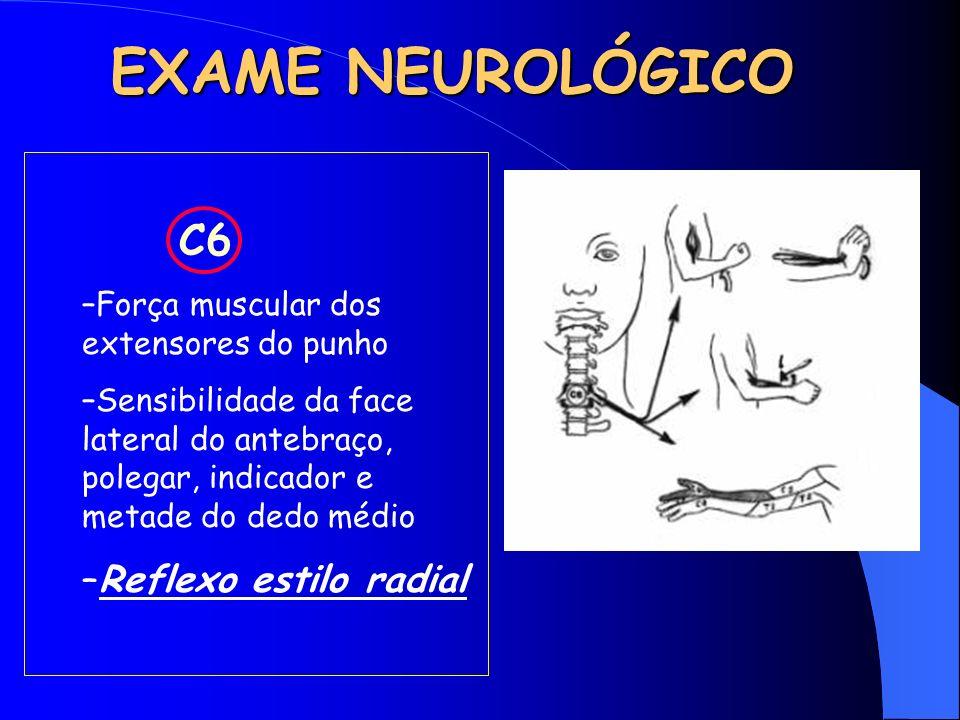 EXAME NEUROLÓGICO Reflexo estilo radial C6