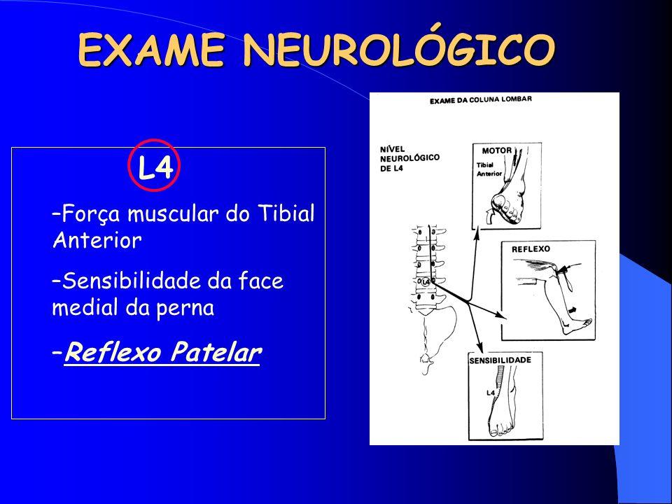 EXAME NEUROLÓGICO Reflexo Patelar L4 Força muscular do Tibial Anterior