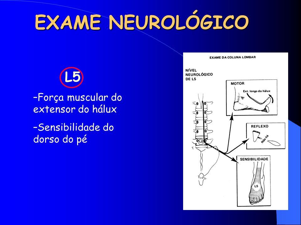 EXAME NEUROLÓGICO L5 Força muscular do extensor do hálux
