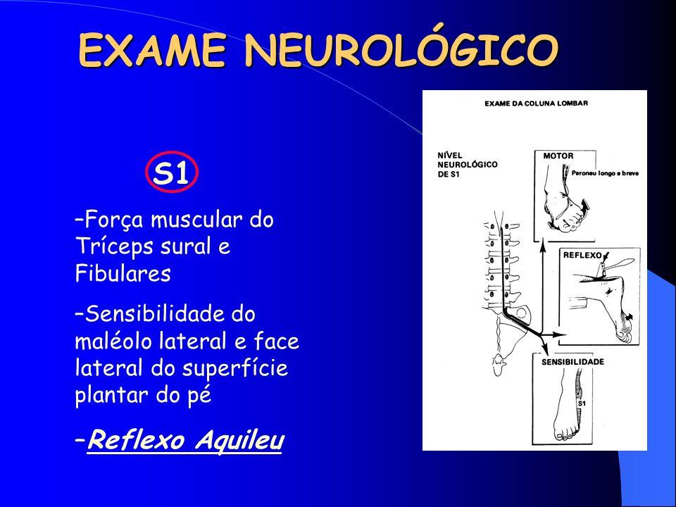 EXAME NEUROLÓGICO Reflexo Aquileu S1