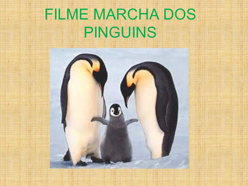 FILME MARCHA DOS PINGUINS