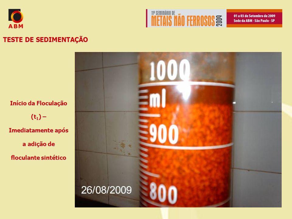 TESTE DE SEDIMENTAÇÃO Início da Floculação (t1) – Imediatamente após a adição de floculante sintético.