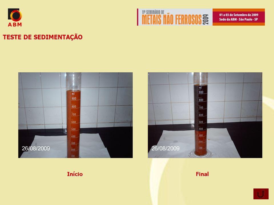 TESTE DE SEDIMENTAÇÃO Início Final