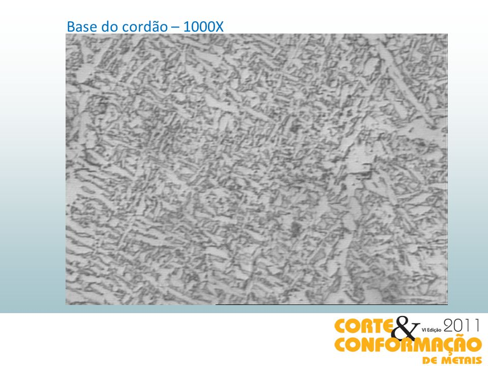 Base do cordão – 1000X