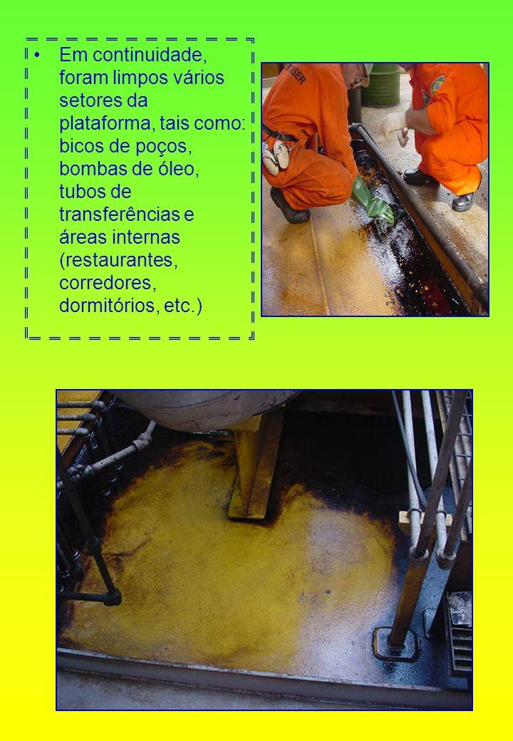 Em continuidade, foram limpos vários setores da plataforma, tais como: bicos de poços, bombas de óleo, tubos de transferências e áreas internas (restaurantes, corredores, dormitórios, etc.)