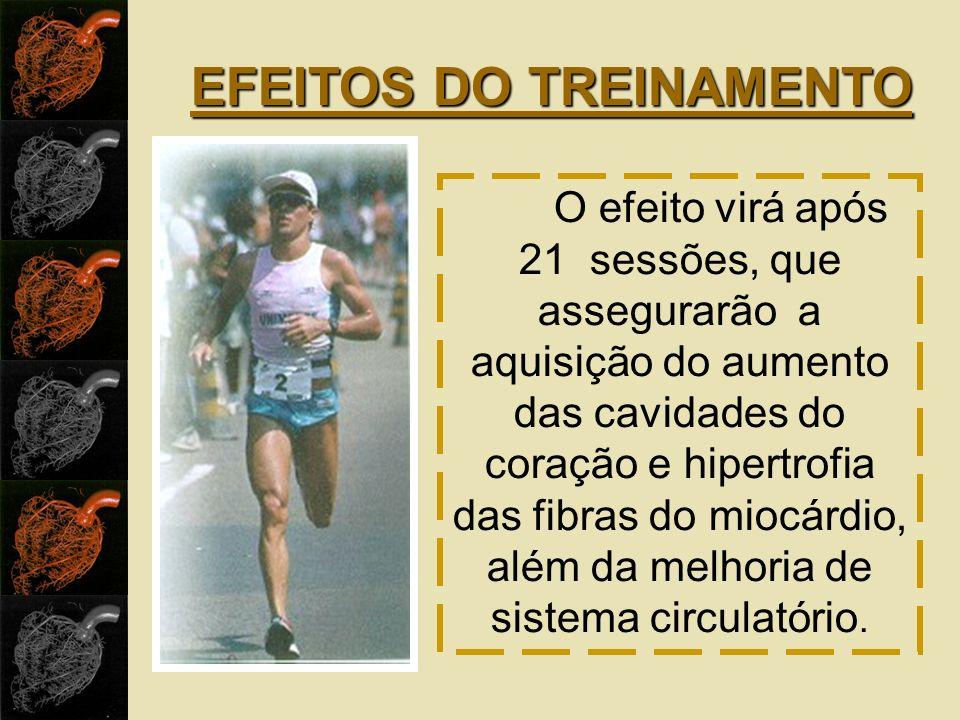 EFEITOS DO TREINAMENTO
