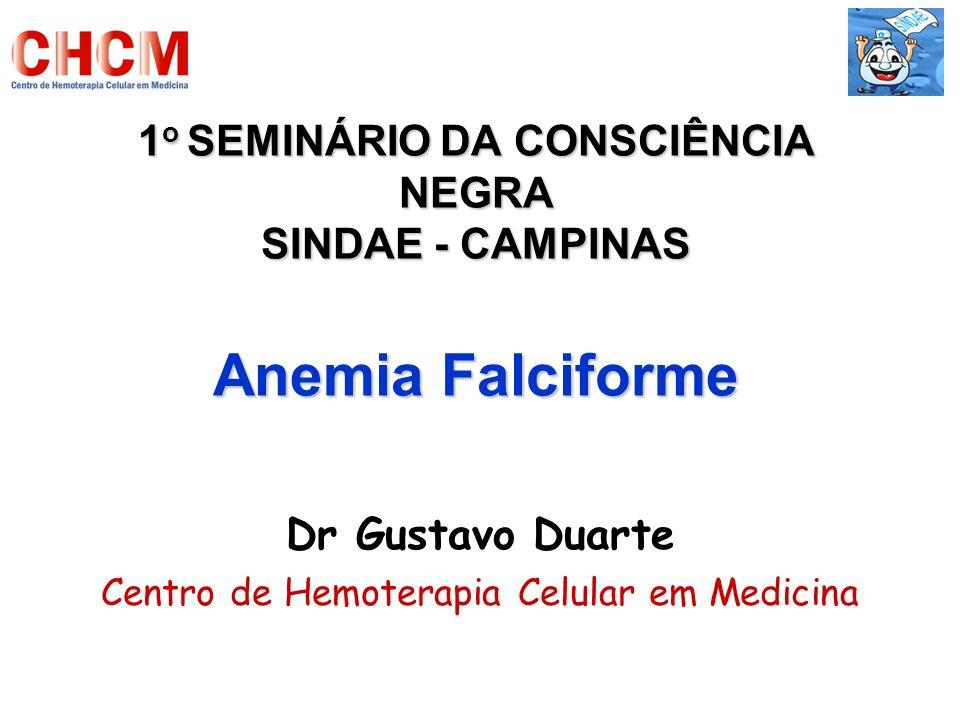 1o SEMINÁRIO DA CONSCIÊNCIA NEGRA SINDAE - CAMPINAS Anemia Falciforme