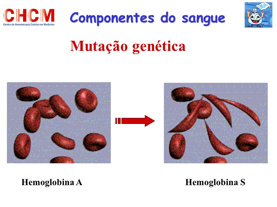 Componentes do sangue Mutação genética Hemoglobina A Hemoglobina S