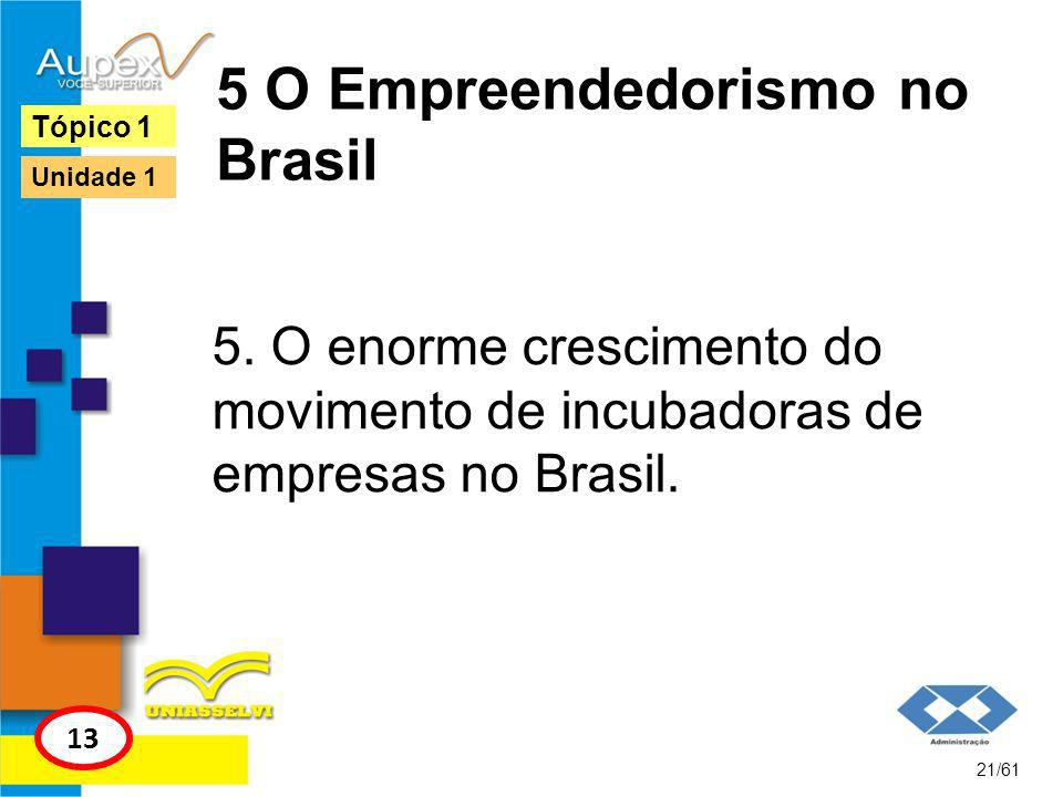 5 O Empreendedorismo no Brasil