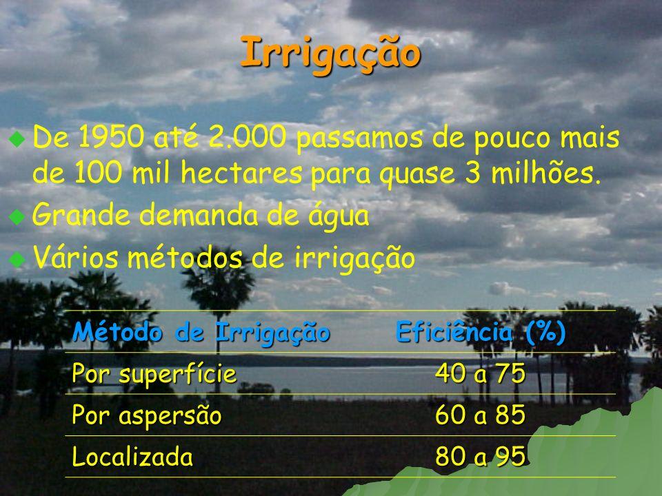 Irrigação De 1950 até 2.000 passamos de pouco mais de 100 mil hectares para quase 3 milhões. Grande demanda de água.