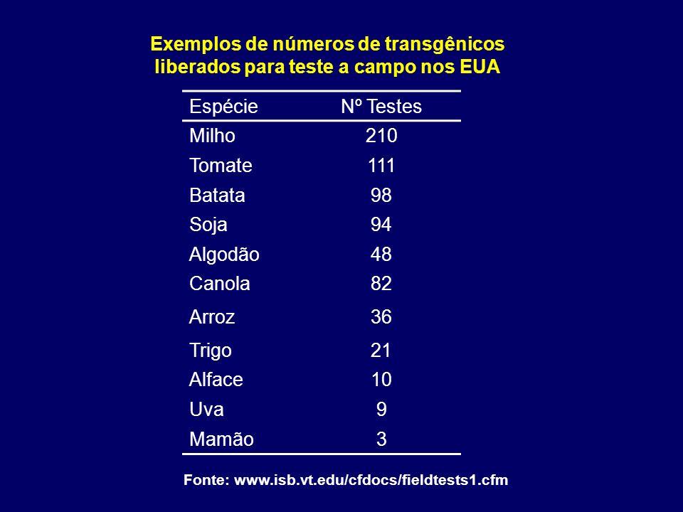 Exemplos de números de transgênicos liberados para teste a campo nos EUA