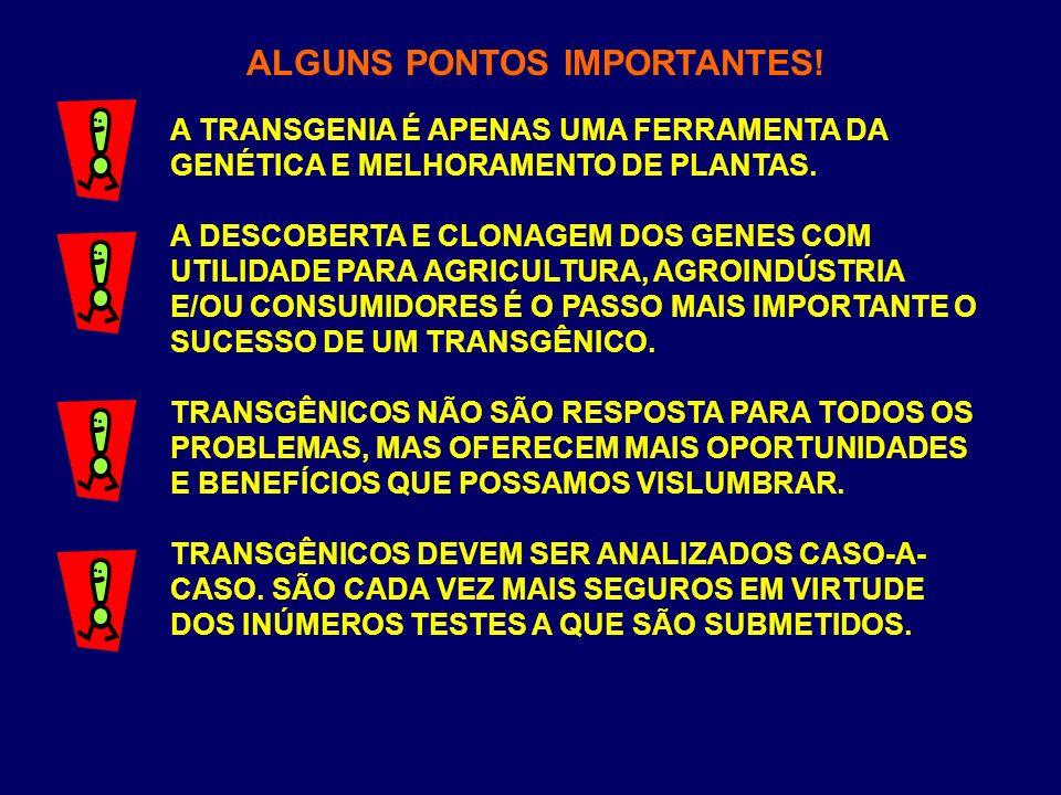 ALGUNS PONTOS IMPORTANTES!