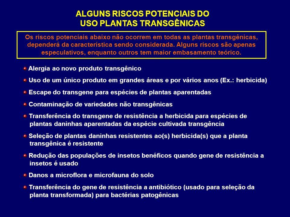 ALGUNS RISCOS POTENCIAIS DO USO PLANTAS TRANSGÊNICAS
