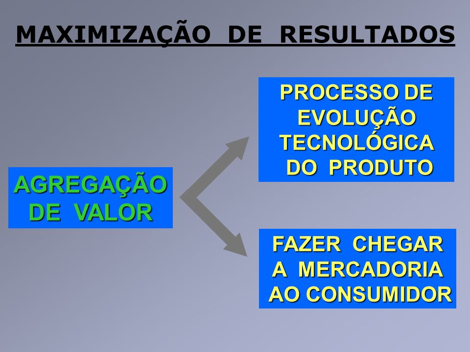 MAXIMIZAÇÃO DE RESULTADOS