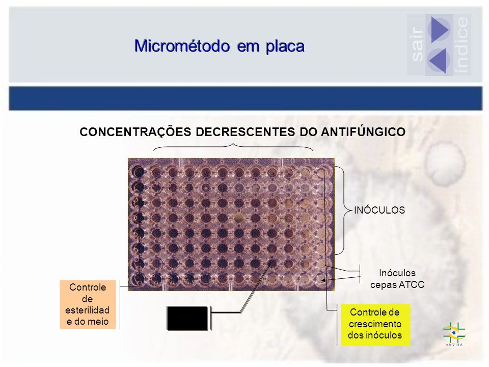 CONCENTRAÇÕES DECRESCENTES DO ANTIFÚNGICO