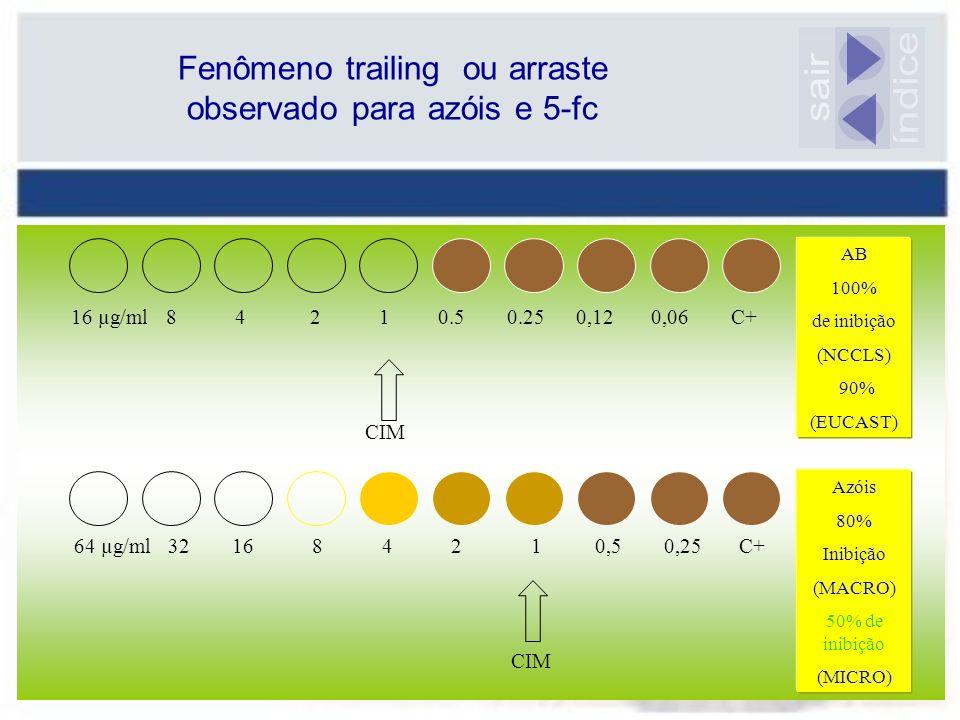 Fenômeno trailing ou arraste observado para azóis e 5-fc