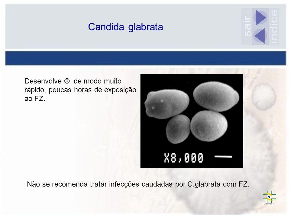 índice sair Candida glabrata