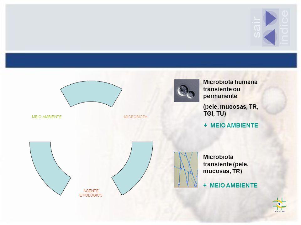 índice sair Microbiota humana transiente ou permanente